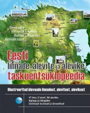 007618 - Eesti linnade, alevite ja alevike taskuentsüklopeedia
